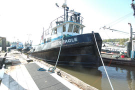 MV River Eagle010.NEF